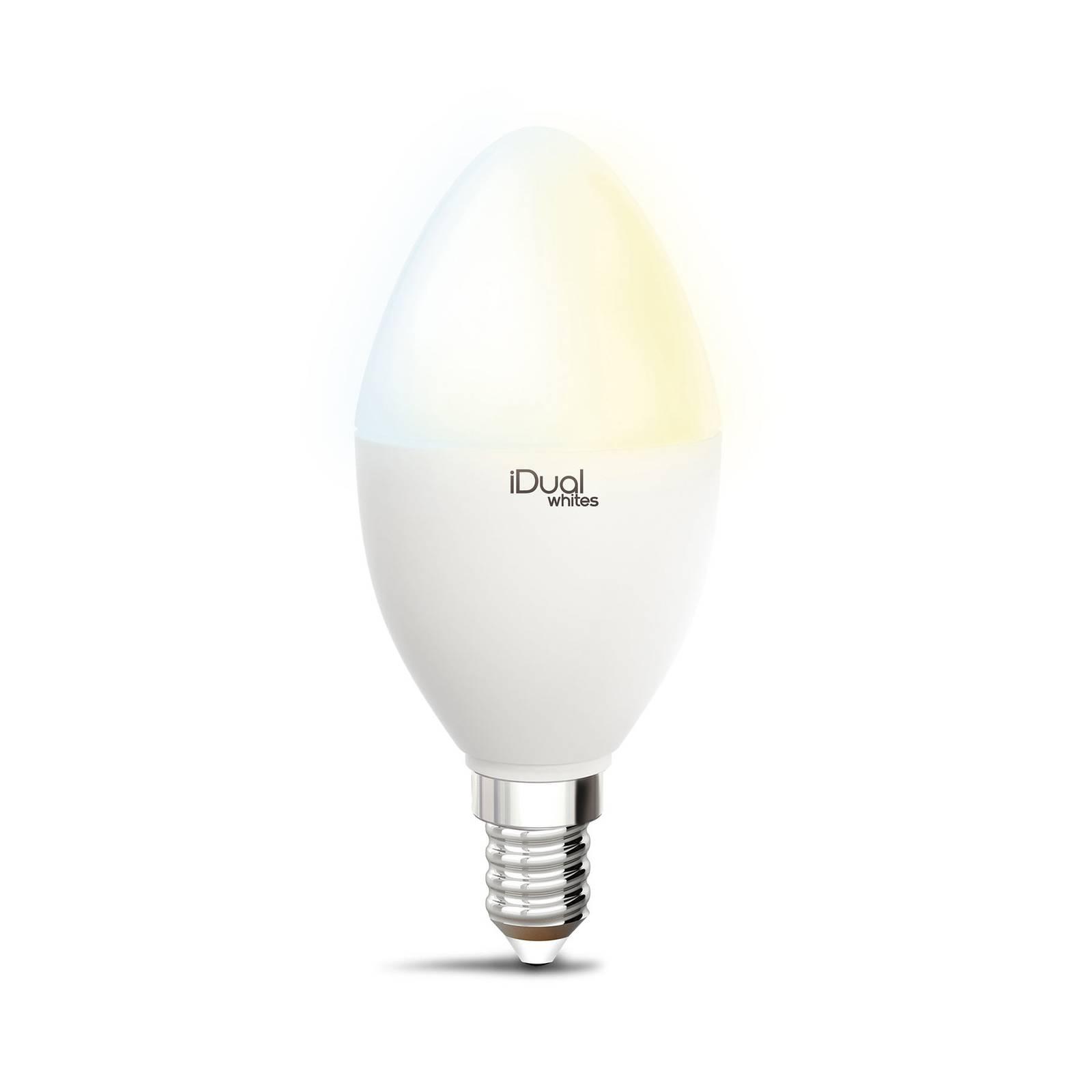 iDual Whites -LED-lamppu, kynttilä P45 E14 5,5 W