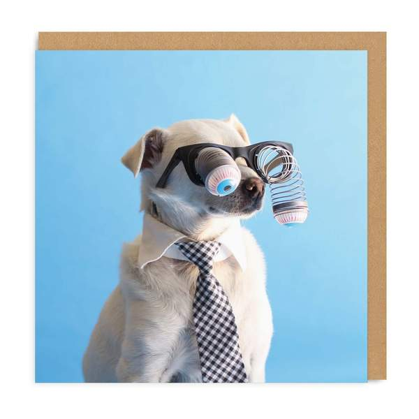 Googly Eyes Dog Square Greeting Card