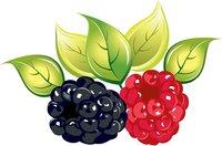 Раскраски Ягоды и фрукты