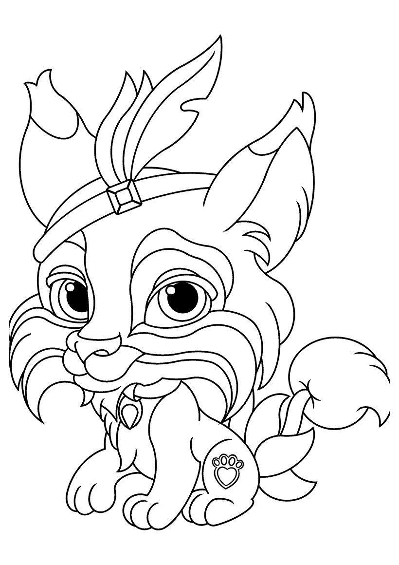 Раскраска Питомец Покахонтас рысь Коготок
