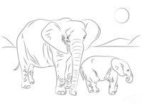 Раскраска Африканский слон с семьёй