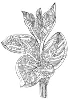 Раскраска Арт-терапия Экзотический цветок