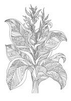 Раскраска Арт-терапия Лесной цветок