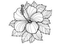 Раскраска Арт-терапия Одинокий цветок