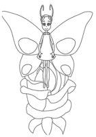 Раскраска Бабочка Элина