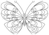 Раскраска Бабочка с изумительным рисунком