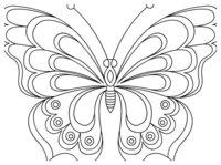 Раскраска Бабочка с волнистой раскраской