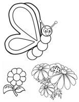Раскраска Бабочка выбирает цветочек