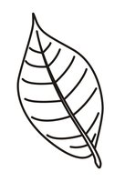 Раскраска Большой лист