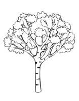 Раскраска Дерево осенью