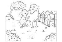 Раскраска Детская открытка с овечками
