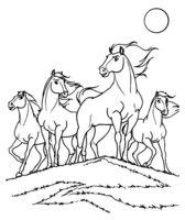 Раскраска Дикие кони