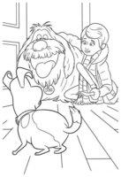 Раскраска Кэти - хозяйка Макса и Дюка