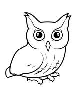 Раскраска Кричащая сова