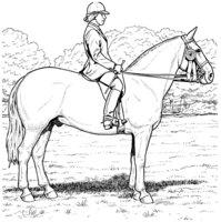 Раскраска Лошадь с наездником