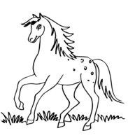 Раскраска Лошадь скачет по траве