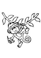 Раскраска Обезьяна на ветке с бананом
