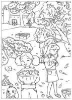 Раскраска Осенний сбор яблок
