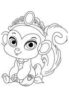 Раскраска Питомец Жасмин обезьянка Найл