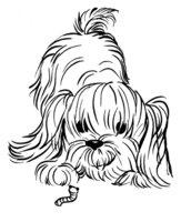 Раскраска Пушистая собачка заинтересовалась червячком