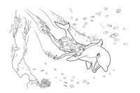 Раскраска Русалочка и дельфин