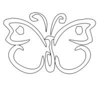 Раскраска Симметричная бабочка