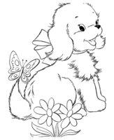 Раскраска Собачка и бабочка