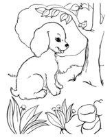 Раскраска Собака в лесу возле дерева