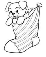 Раскраска Собака забралась в рождественский носок