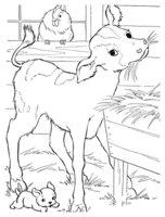 Раскраска Телёнок, курица и собачка
