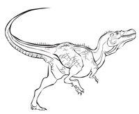 Раскраска Тираннозавр