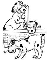 Раскраска Три собаки