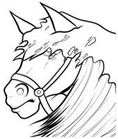 Раскраска Украшенный жеребец