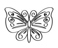 Раскраска Весёлая бабочка