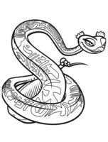 Раскраска Влюблённая змея