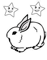 Раскраска Заяц сидит под звездами