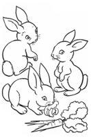 Раскраска Зайчата кушают морковки