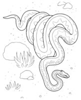 Раскраска Змея ползёт по пустыне