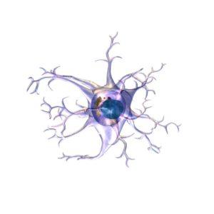 Beyin hücresi astrosit felcin yayılmasında sorumlu olabilir