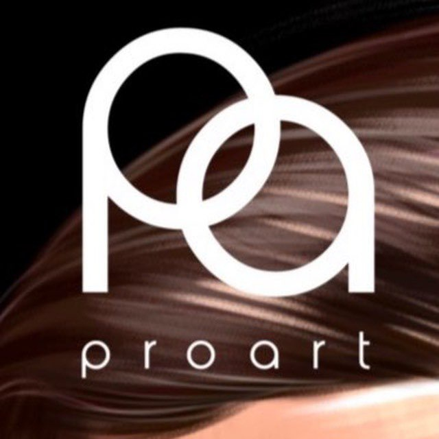 ProArt School