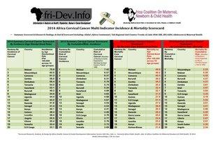 Afri-dev - 2014 scorecard cervical cancer