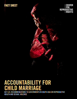 Centre for Repro Rights - Accountability fact sheet