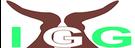 Inua-Girls-Group-IGG-Logo.png
