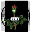 ODWACE-Logo.png