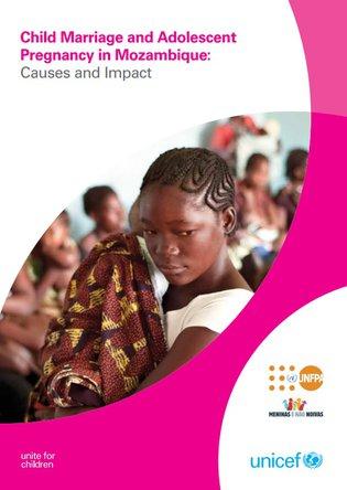 UNICEF Mozambique - report screenshot