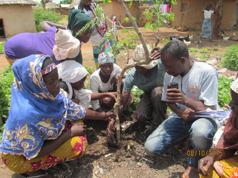 households-plant-a-moringa-tree-to-symbolize-a-new-begining-eliminating-child-marriage-and-nuturing-their-children-to-be-responsbile-adult-1024x768.jpg