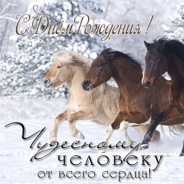 Картинки лошади поздравления с днем рождения, анимация красивые