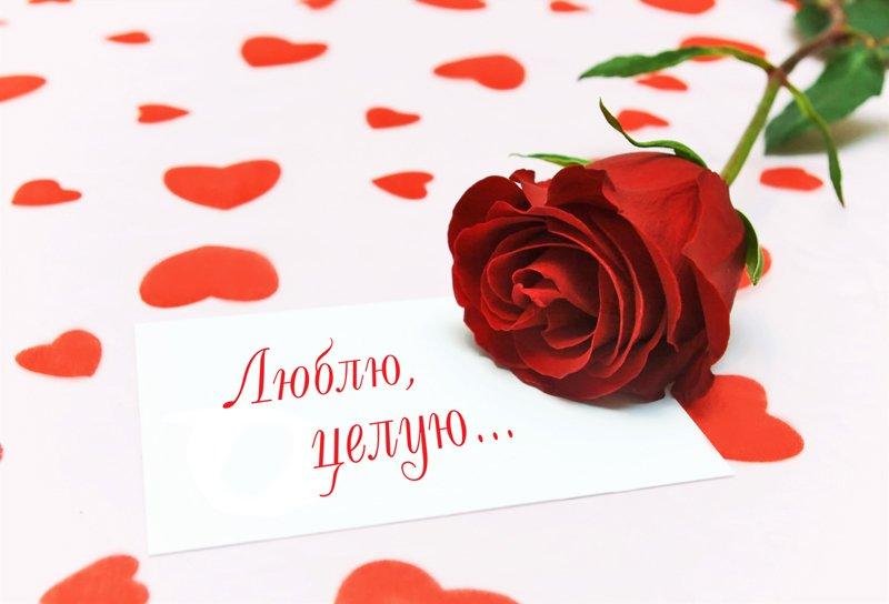 Люблю тебя красивая открытка