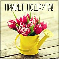 Бесплатная открытка привет подруга