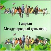 День птиц картинка